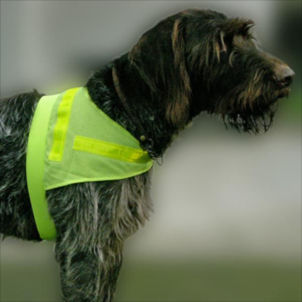 """Sicherheitsweste für Hunde """"Scotchlite"""" für Terrier & Teckel"""